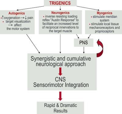 Trigenics Diagram