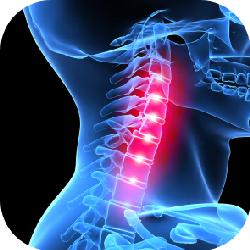 whiplash-neck-injury