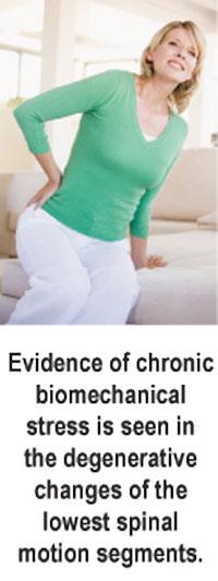 http://www.theamericanchiropractor.com/images/danchickartpic.jpg