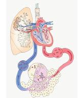 heartfebruary