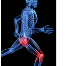 Joint Pains Bother Fitness Seeker